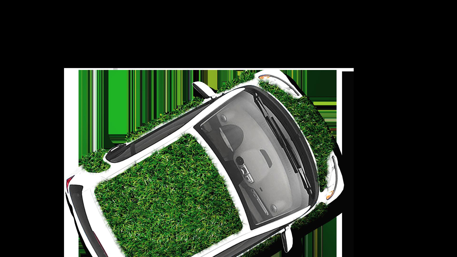 Cover for greenskin